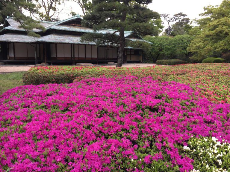 Emporer's Palace Gardens Tokyo