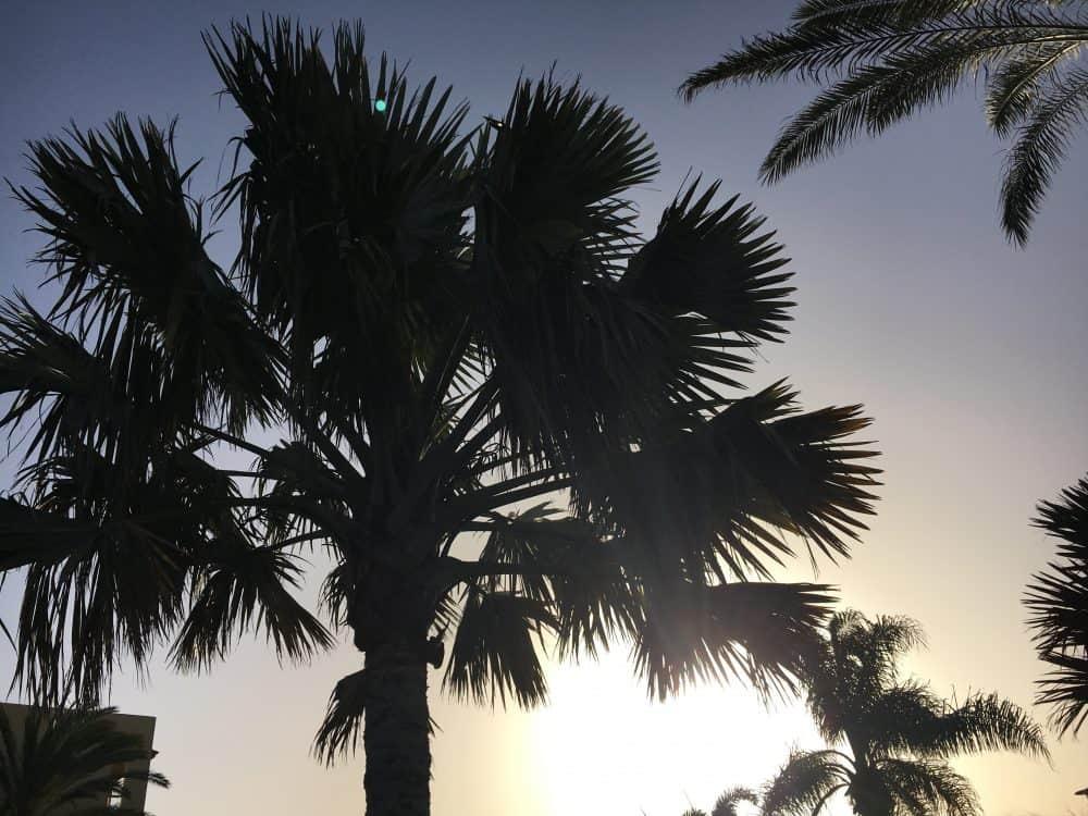 Weather in Fuerteventura in February