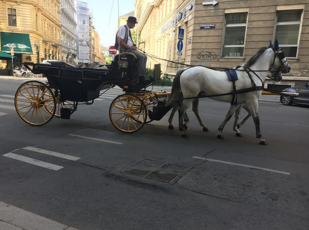 How we got around Vienna
