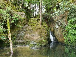 Ffynone Waterfall