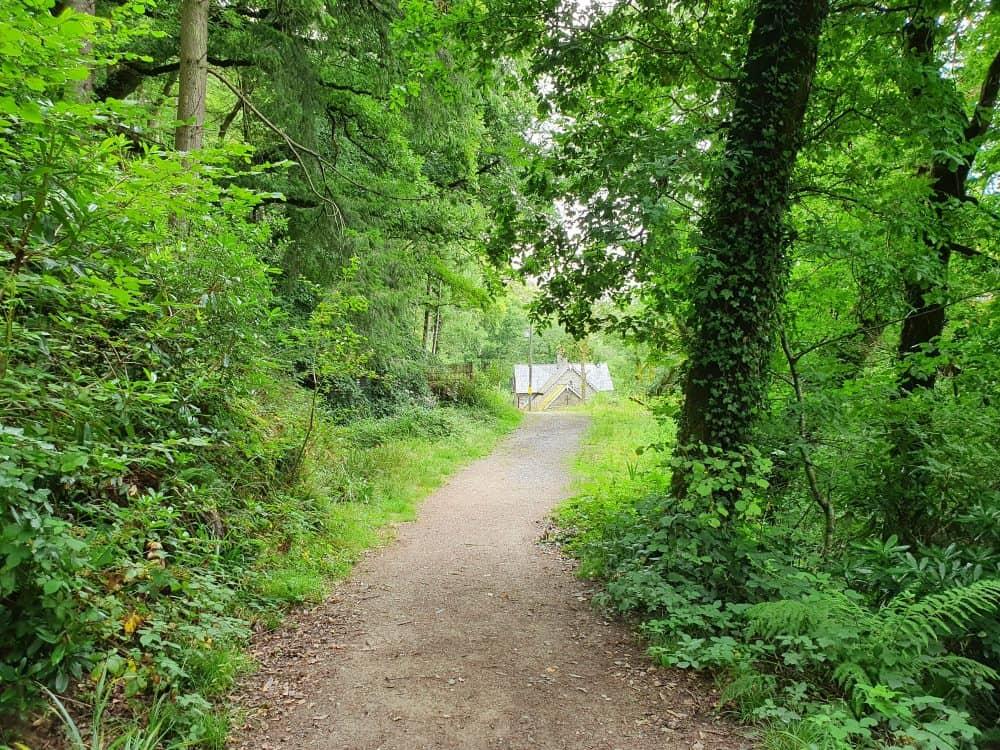 Ffynone Waterfall walk