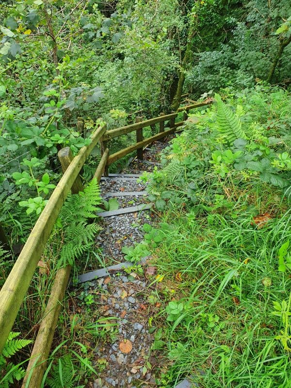 Steps on the Gwaun Valley Waterfall walk