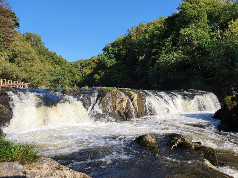 Cenarth Falls