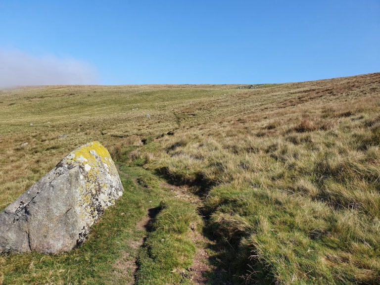 the fork on the way to the Preseli Hills crash site