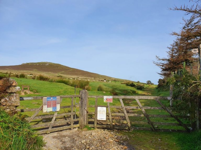 The gate on the Foel Drygarn walk