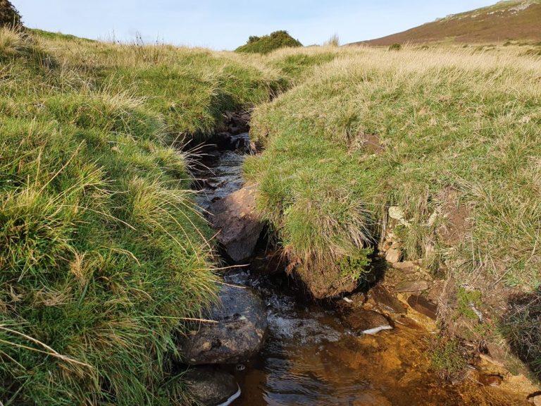 Stream on the Foel Drygarn walk