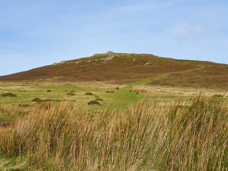 Obvious path on the Foel Drygarn walk