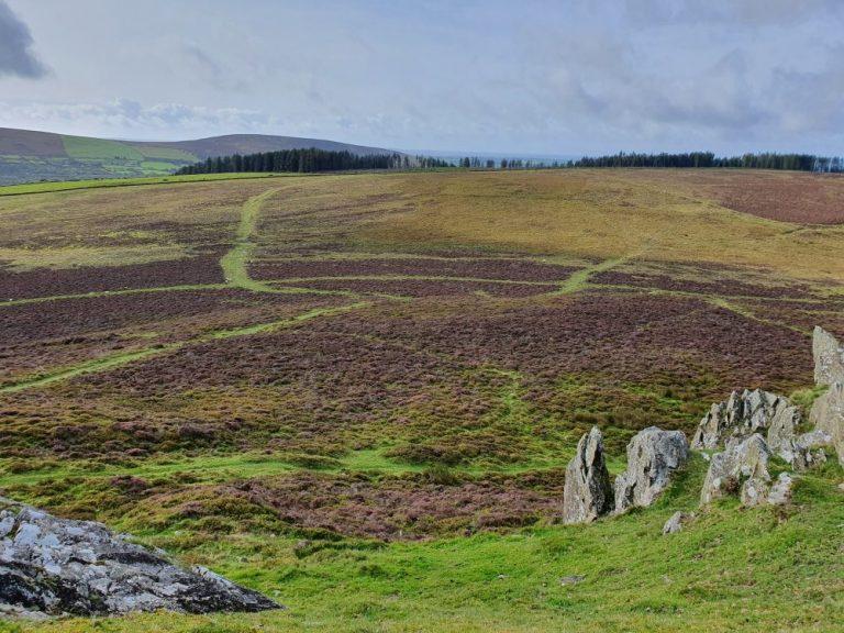 Preseli Hills walks from Foel Drygarn