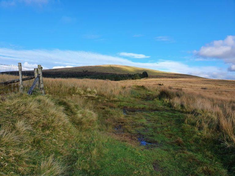 The first gate on the walk to Foel Cwmcerwyn