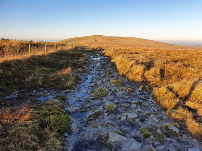 The Preseli Hills Golden Road cobbles