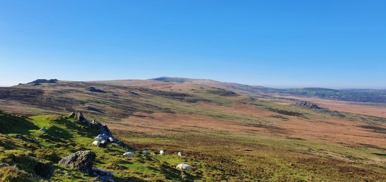 Thoughts on The Preseli Hills Golden Road