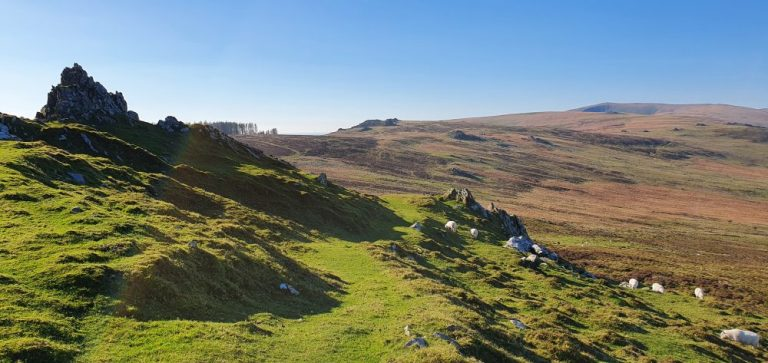 Preseli Hills walks