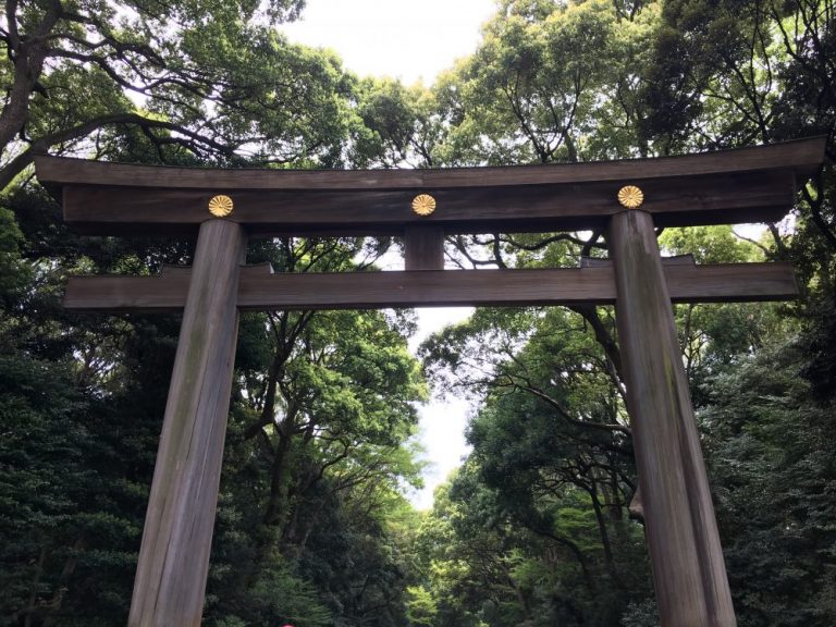 Meiji Shrine is one of the things to do in tokyo for free