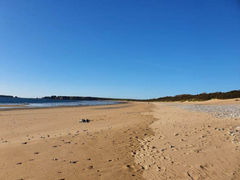 Beaches in Tenby - South