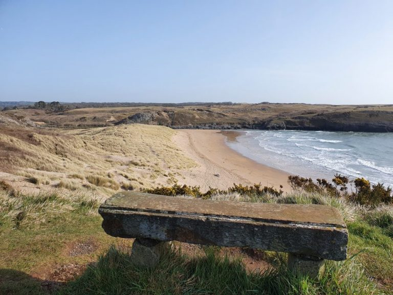 Bench overlooking Broadhaven South